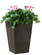 "products/Кашпо ""Rattan Planter S (small) 23,6L"" Keter  (арт. 17192300)"