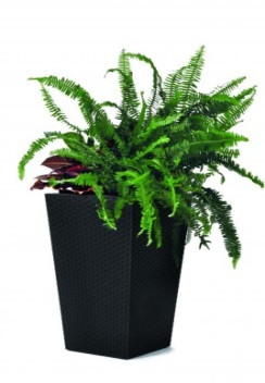 "products/Кашпо ""Rattan Planter L (large) 144,8L"" Keter  (арт. 17192302)"