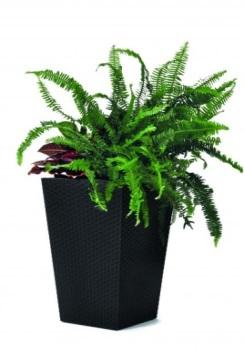 "products/Кашпо ""Rattan Planter L (large) 144,8L"" Keter  (арт. 17192302)"
