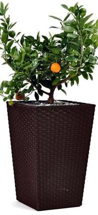 "products/Кашпо ""Rattan Planter M (medium) 55,4L"" Keter  (арт. 17192301)"